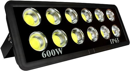 Morsen LED Flood Light 600W