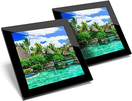 Impresionante juego de 2 posavasos de cristal – Posavasos de calidad brillante de Isla Mauricio/mantel de calidad para cualquier tipo de mesa #3460: Amazon.es: Hogar