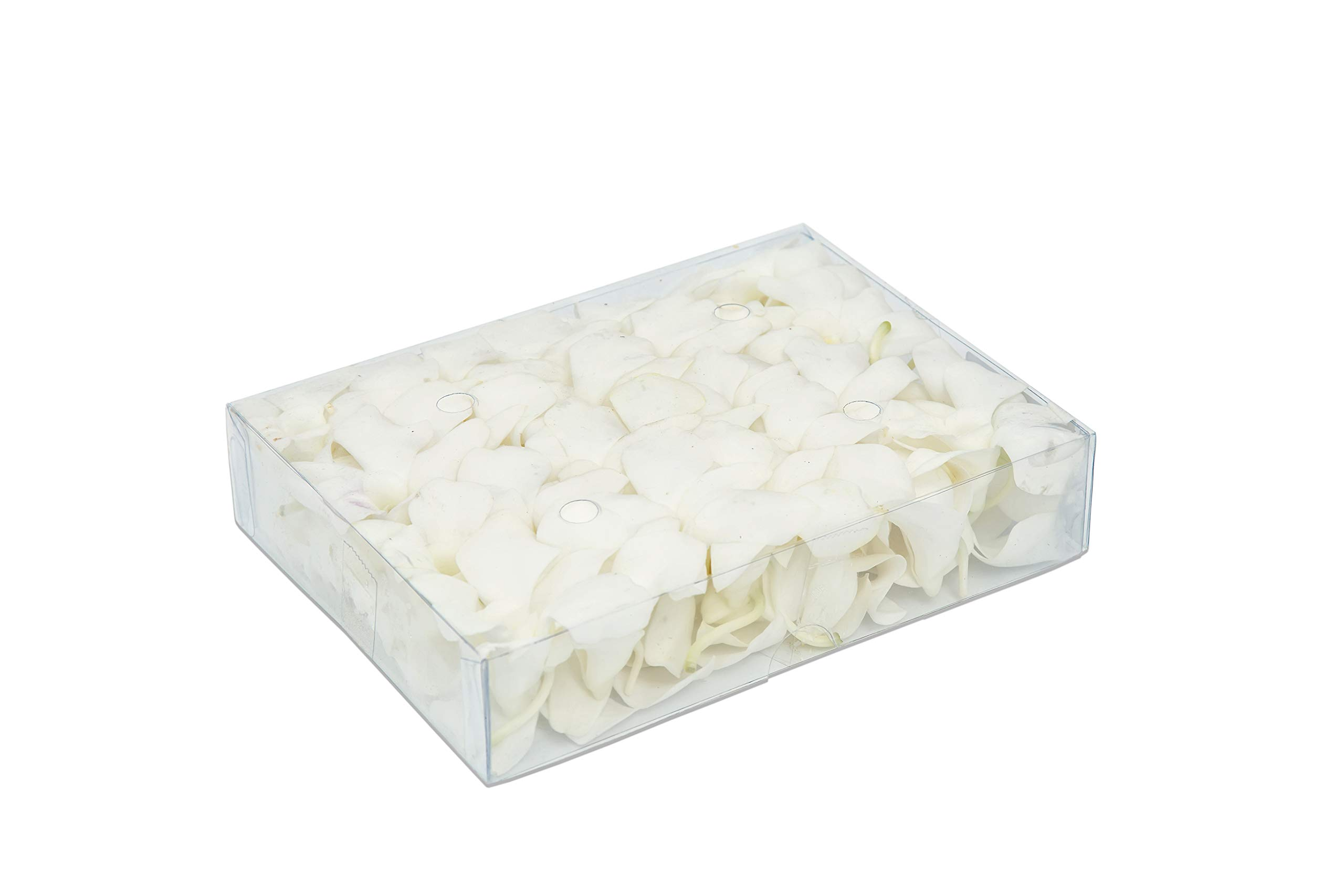 Fresh Dendrobium Orchid Heads Blooms (50 Pieces/Box) - Natural White