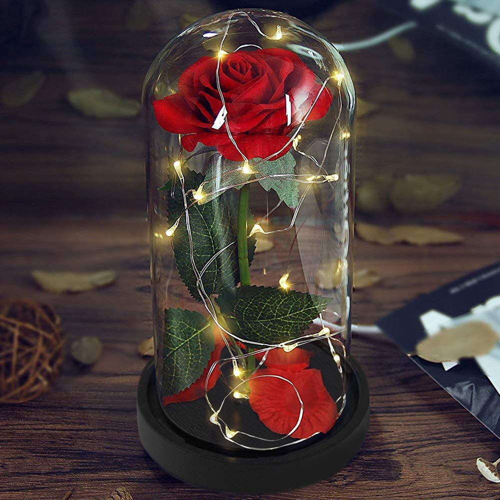 Deluxsa Enchanted Red Silk Rose,Beauty and the Beast Rose with Fallen Petals in A Light Dome,Home/Office or Home Decorations, Anniversary, Valentine\'s Day Christmas Gift