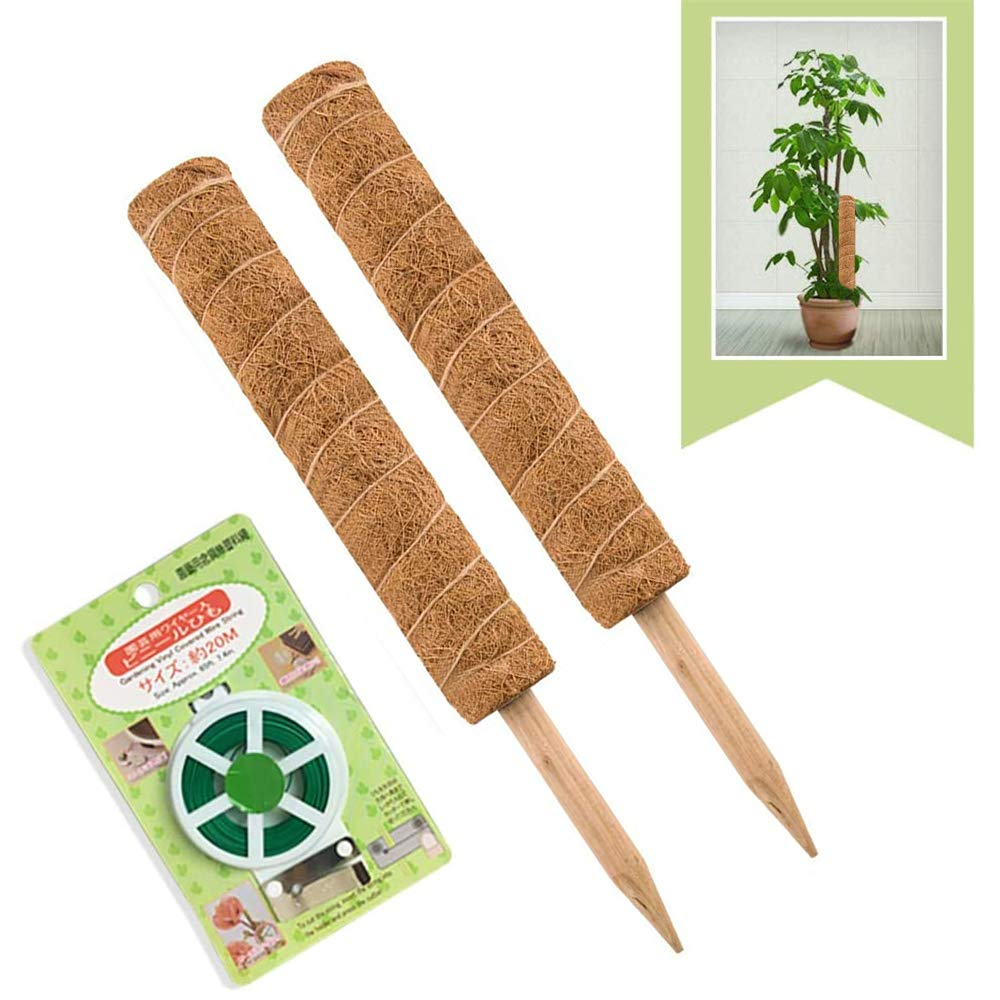 JOYSEUS 30 Inch Moss Pole for Climbing Plants - 2 Pack 15 Inch Coir Totem Pole Plant Support with 65 Feet Garden Twist Tie for Monstera and Potted Plants to Grow Upwards…