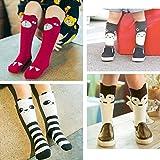 ALLYDREW Zoo Animals Tube Socks Toddler Tube Socks