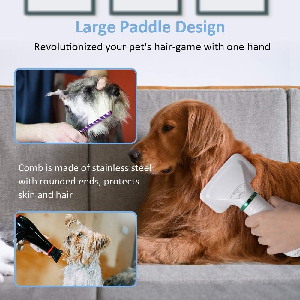 Guía para comprar los mejores secadores de pelo para perros