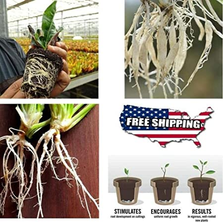 Rapid Growth Root 40G Paclobutrazol of Growthy™ Instant Rooting Solution