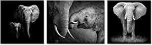 Animal Canvas Wall Art Decor Black and White Elephant Picture on Canvas Elephant Painting Artwork for Living Room Decor Giclee Canvas Prints Ready to Hang (12