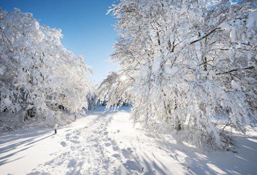 Yeele 10x8フィート 冬写真撮影用背景幕 白雪カバー 森の道路 背景 クリスマス パーティー バナー 装飾 ポートレート 写真ブース シュート スタジオ小道具 写真撮影   B07G6N5L3N