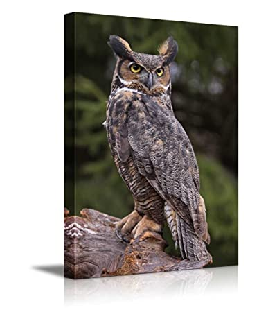 Canvas Prints Wall Art – a Great Horned Owl Sitting on a Tree Stump Modern Wall Decor Home Decoration Stretched Gallery Canvas Wrap Giclee Print Ready to Hang – 32 x 48