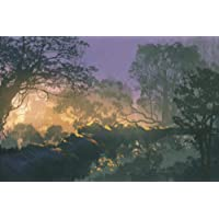 MTAOXZ Jigsaw Puzzles 1000 Pieces for Adults Sunset Trees Hand Made Wooden DIY Jigsaw...
