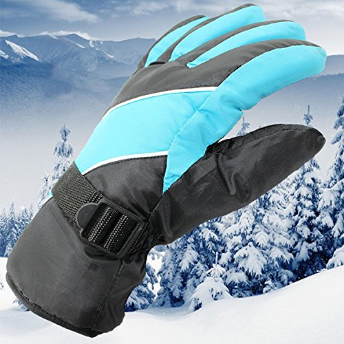 Dealzip Inc®Fashion Babay Blue&Black Mens Winter WindStopper Waterproof Outdoor Sports Snow Skiing Riding Motorcycle Warm Protective Free Size Full Finger Gloves+Random gift