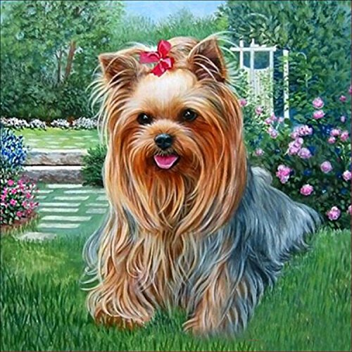 DIY 5D Diamond Painting by Number Kit, Cute Dog Crystal Rhinestone Embroidery Cross Stitch Arts Craft Supply Canvas Wall Decor