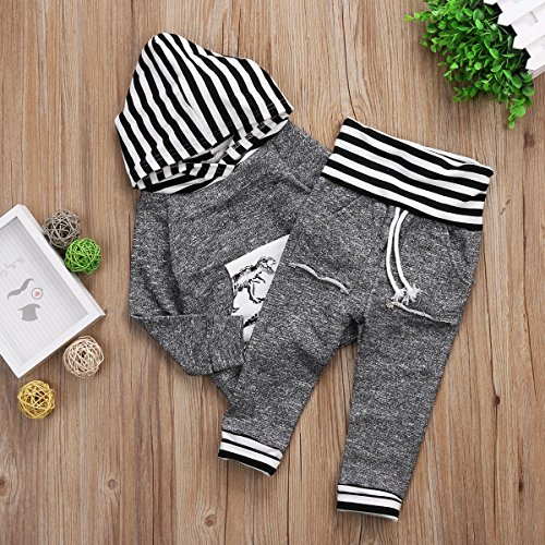 77b53d2e4 Toddler Infant Baby Boys Dinosaur Long Sleeve Hoodie Tops Sweatsuit Pants  Outfit Set (0-