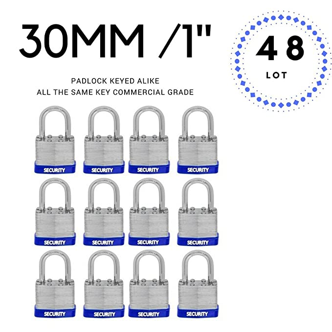 Lot of 48 Laminated Steel Padlocks 30 mm or 1.3/16