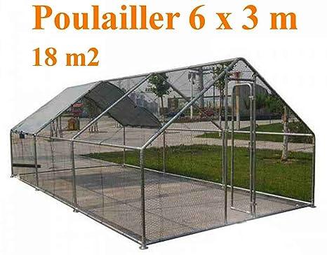 Chicken Coop - Caseta de acero galvanizado (18 m2, diámetro 38 mm, 6
