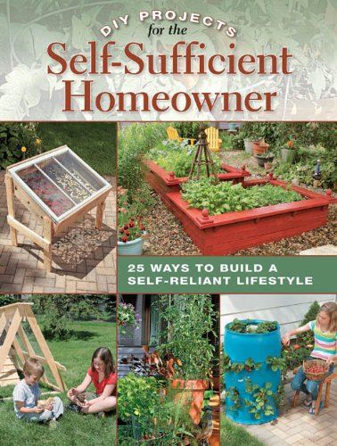 DIY Projects for the Self-Sufficient Homeowner (Living Second Room Furniture Hand)