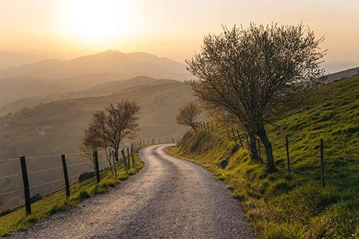 Countryside Winding Road Nature Landscape Photo Cool Wall Decor Art Print Poster 36x24