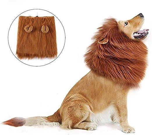 ZYEZI Peluca De Melena De León, Disfraz De Disfraz De Perro Mascota Peluca De Melena De León con Orejas Festival De Ropa De Halloween De Navidad: Amazon.es: Productos para mascotas