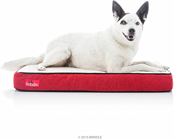 Designer Pet Bed Vintage French Ticking French RedCream Dog Bed French Fabric Waterproof Liner