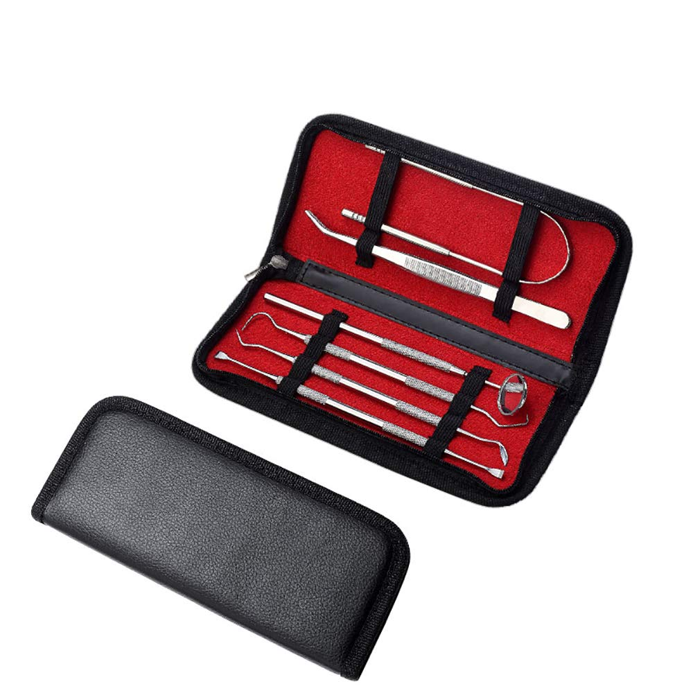 ZUEN Teeth Cleaning Set 6 Pcs, Stainless Steel Dental Hygiene Pack Dental Sticks for Oral Care and Mouth Care Inter-Dental Floss Tooth Pick Set Dental Tools Kit