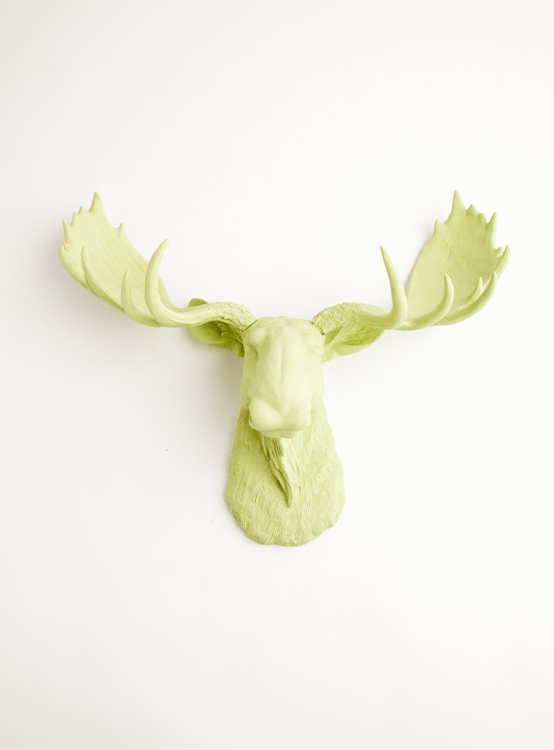 Amazon.com: Faux Moose Head Wall Mount in Mint Green - The Nico By ...