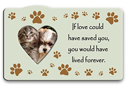 Loss Of Pet >> Loss Of Pet Picture Frames If Love Could Have Saved You You Would Have Lived Forever Memorial Saying Heart Shaped Photo Opening 3 Dog Or