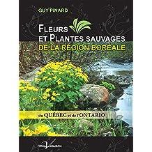 Fleurs et plantes sauvages de la région boréale du Québec et de l'Ontario (French Edition)
