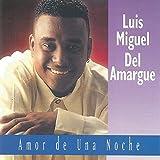 Luis Miguel Del Amargue - Amor De Una Noche