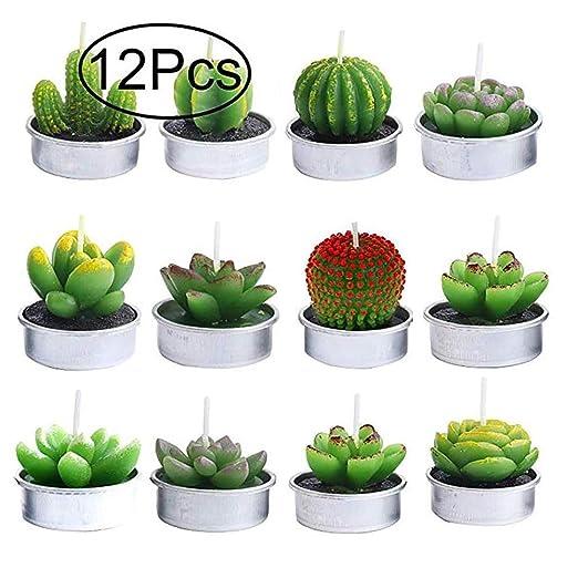 Yakiki 12 Velas aromáticas sin Humo de Cactus Velas de té ...