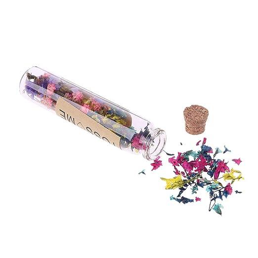 WERTYUPY Flores secas Confeti Botella Artículos de fiesta ...