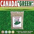 Canada Green Grass Lawn Seed-4 Lbs. Bag