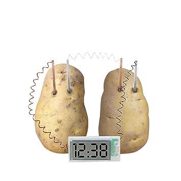Reloj Digital Alimentado por Patata, Juego de Juguetes Divertido para niños: Amazon.es: Hogar