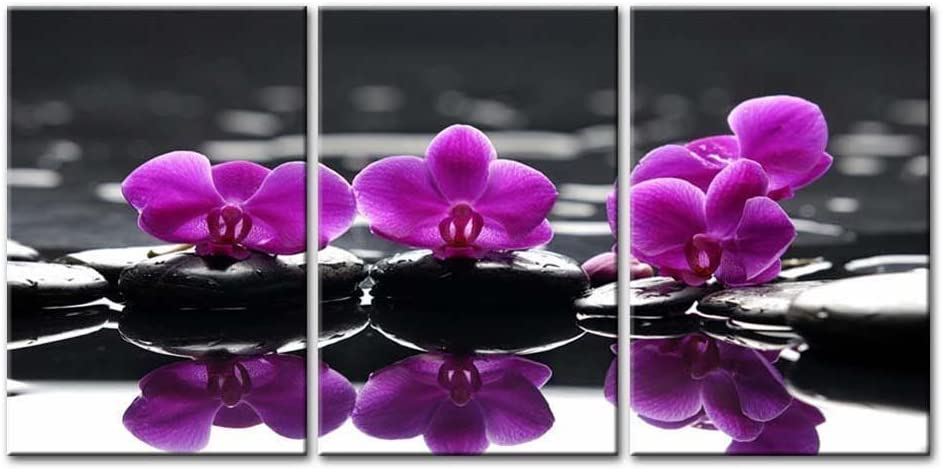 So Crazy Art- Flowers in Spa Wall Art Decor Blooming Purple Butterfly Orchid on The Black Zen Stones Canvas Pictures Artwork 3 Panel Painting Prints for Home Living Dining Room Kitchen