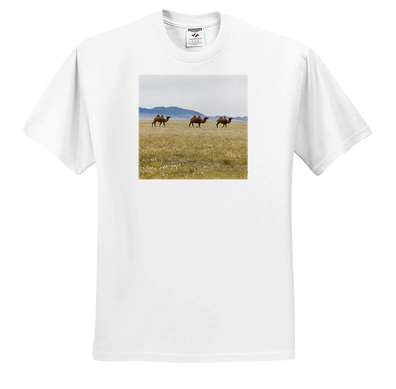 Camels 3dRose Danita Delimont ts/_312800 Bactrian Camel Herd Gobi Desert Mongolia - Adult T-Shirt XL
