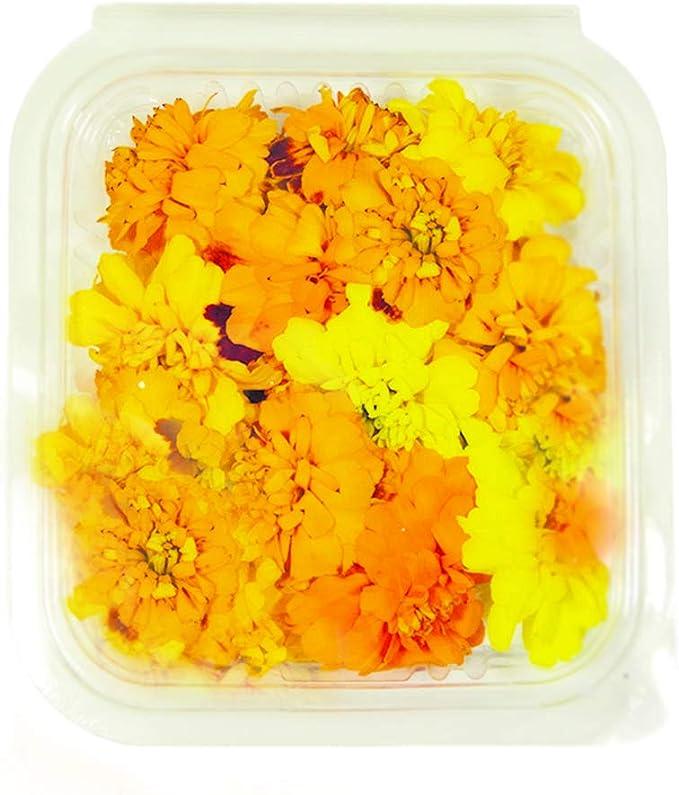 Fiori Arancioni E Gialli.Fiori Commestibili Biologici 15 Tagete Di Colori Arancione E