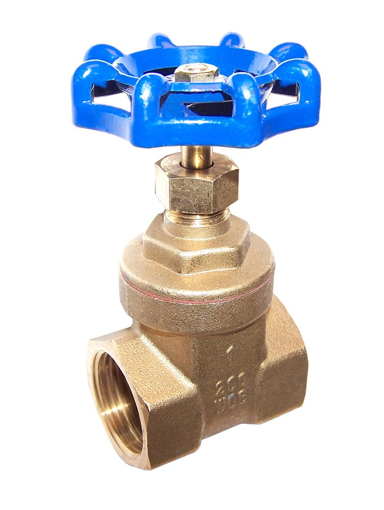 SMB Cd53 Complete Valve for M81