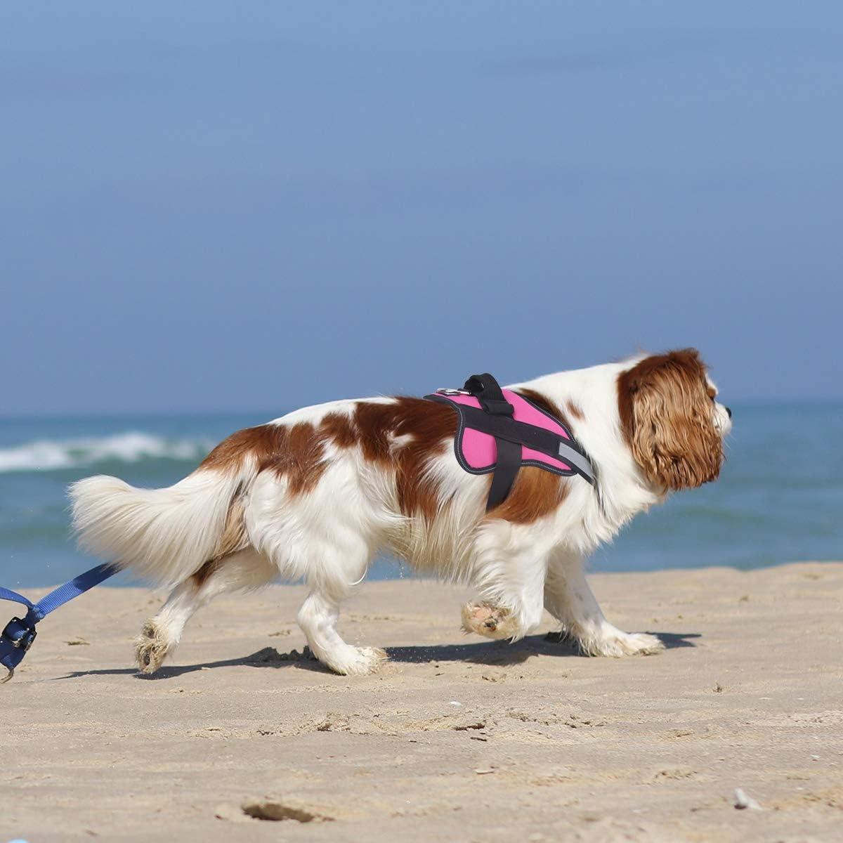 Bolux Reflective Adjustable Dog Harness
