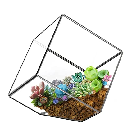 HOMEIDEAS Modern Artistic Clear Cube Box Glass Geometric Plant Terrarium Succulent Holder Box