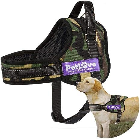 Arnés PetLove para perro, correa suave acolchada, sin tirones ...