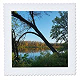 3dRose Danita Delimont - Lakes - Marshs Lake, Spruce Woods Provincial Park, Manitoba - 20x20 inch quilt square (qs_257516_8)