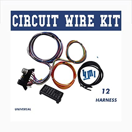 Amazing Amazon Com Autoday Wiring Harness Kit 12 Circuit Hot Rod Universal Wiring Cloud Staixuggs Outletorg