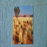 SOCOMIMI Absorbent Towel Tree Desert Sossusvlei Namibia Southern Africa Photo Marigold Sky Blue and Green Soft Cotton Durable