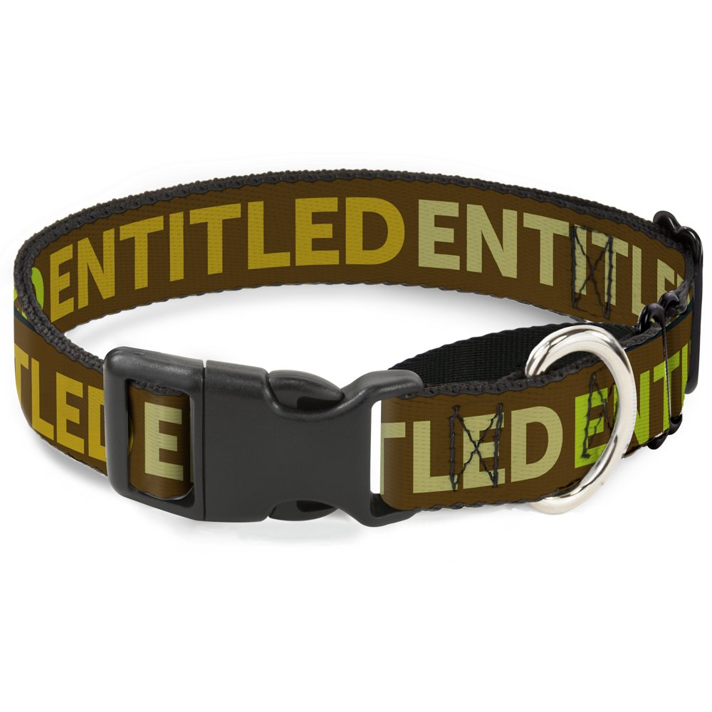 Buckle-Down Entitled Tonal Greens Martingale Dog Collar, 1  Wide-Fits 15-26  Neck-Large