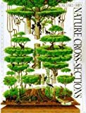 Nature Cross-sections by Richard Orr (1995-09-09)