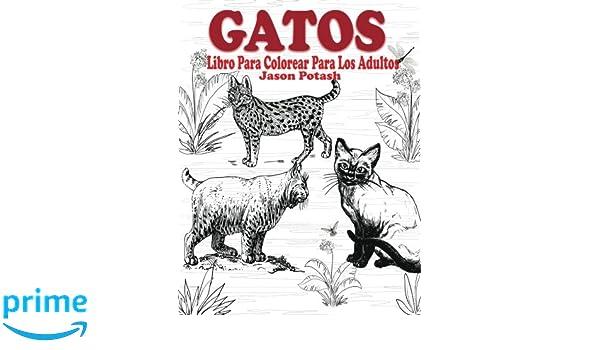 Gatos Libro Para Colorear Para Los Adultos El Estrés Adulto Dibujos ...
