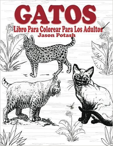 Gatos Libro Para Colorear Para Los Adultos El Estrés Adulto Dibujos para colorear: Amazon.es: Jason Potash: Libros