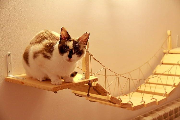 Puente colgante estilo Indiana Jones de madera y cuerda para gatos: Amazon.es: Handmade