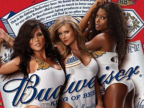 Budweiser Girls Custom Poster Print Art Wall Decor