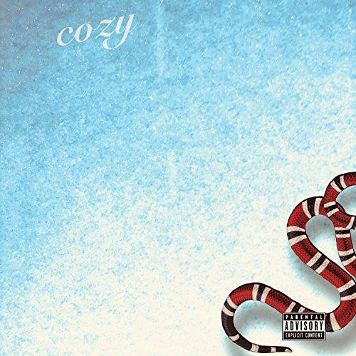 Cozy (feat. Blaz3 & AveGotHits) - Blaz3 The