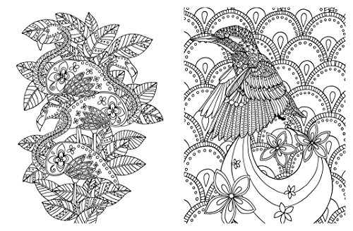 It's just a photo of Monster Posh Coloring Book Soothing Designs