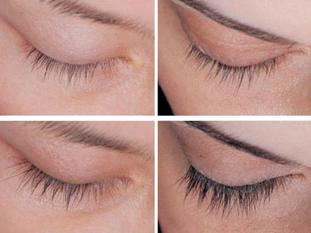 Amazon.com : Organyc Eyelash & Eyebrow Growth Serum (High Potency ...