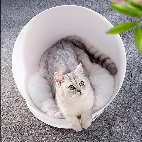Se Puede Usar Una Cama Para Mascotas, Una Cama Para Gatos ...